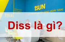 Diss nghĩa là gì ?