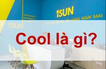 Cool có nghĩa là gì ?