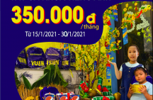 Giảm học phí tiếng Anh mừng Xuân – chỉ 350.000đ/tháng